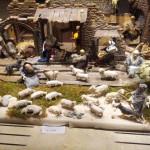 Krippe mit vielen Schafen